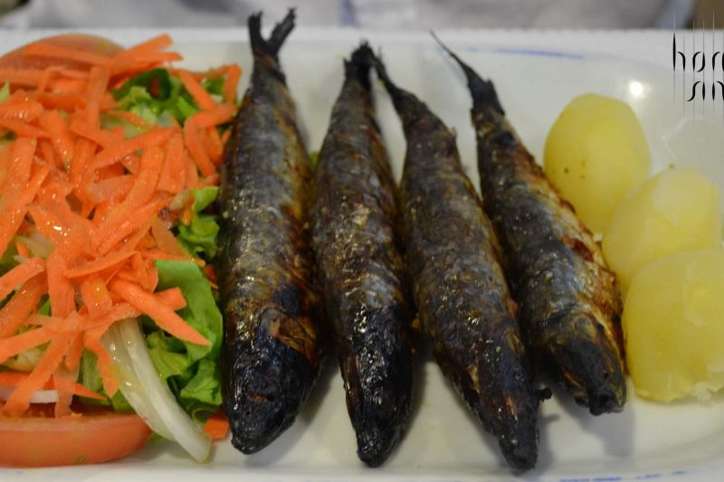 sardine, portugalia, homari, cuști de homari, mare , creveți